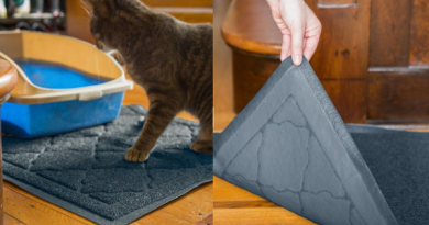 easyology-cat-litter-mat