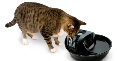 pioneer pet raindrop ceramic pet drinking fountain