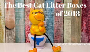 the best cat litter boxes feature image