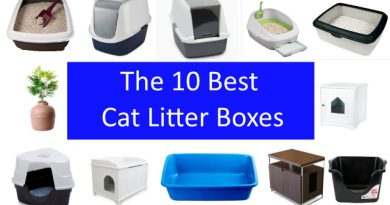 12 different litter boxes and a statement saying the 10 best cat litter boxes