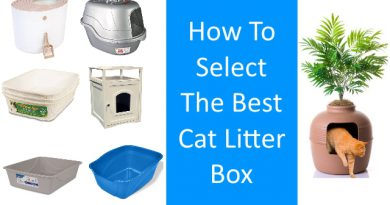 an image showing 7 litter boxes and stating how to select the best cat litter box