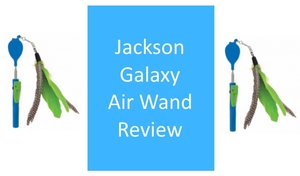 the jackson galaxy air wand on the left and right of a box saying product review