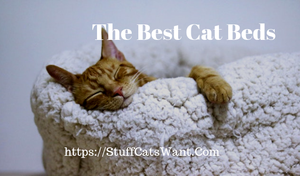 a cat asleep in a bed with text that says the best cat beds