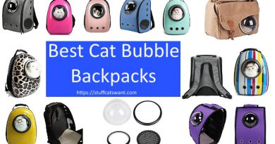 multiple cat bubble backpacks and pieces of bags