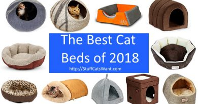 multiple cat beds and a blue banner saying best cat beds of 2018