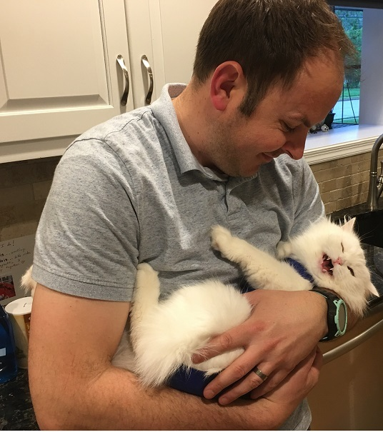 a white Persian cat being held like a baby