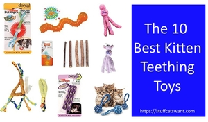 The best kitten teething toys