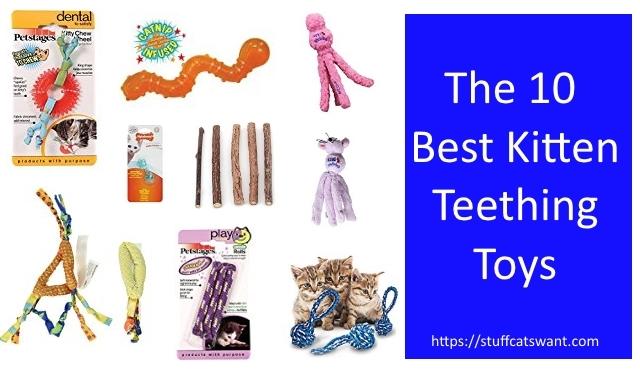 The best kitten teething toys