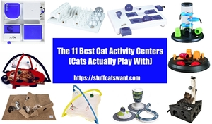 numerous cat activity centers in a circle around the title