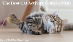 the best cat activity centers feature image