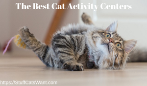 a cat playing with text that says the best cat activity centers