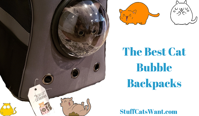 a cat in a bubble backpack and text that says the best cat bubble backpacks