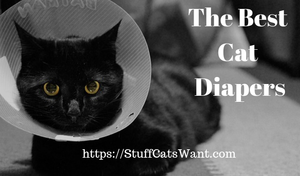a cat in a cone with text that says the best cat diapers