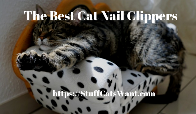 a cat on a couch showing his nails with text that says the best cat nail clippers