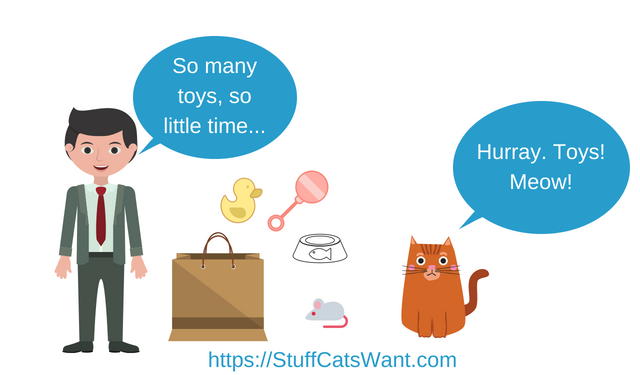 a person giving their cat lots of toys