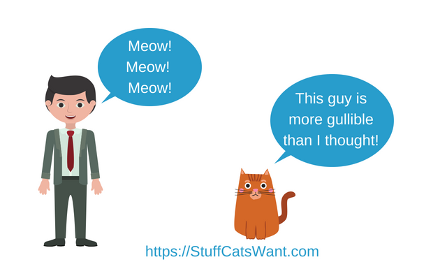 a person meowing at their cat