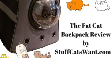 The Fat Cat Backpack Review