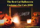 Cat halloween Costumes for Cats 2018