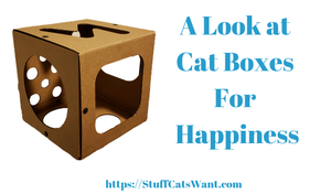 a cardboard box made for cats