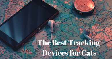 A map, a compass and a note that says the best tracking devices for cats