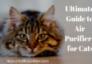 a picture of a very fluffy cat that says the ultimate guide to air purifiers for cats