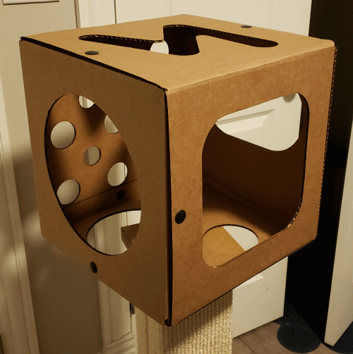 the cat box for happiness on a scratching post