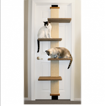 the smartcat door climber