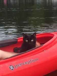 Audrey in the kayak