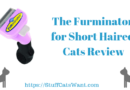 The furminator for cats with short hair review