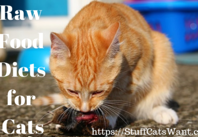 A cat eating a mouse with text that says raw food diets for cats