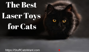 a cat looking at a laser dot with text that says the best cat laser toys